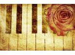 Ρεσιτάλ Πιάνου της Κωνσταντίνας Μπάφα